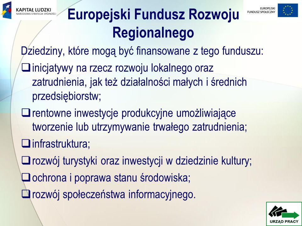 Europejski Fundusz Społeczny EFS zajmuje się następującymi dziedzinami: promocją aktywnej polityki rynku pracy mającą na celu przeciwdziałanie i zapobieganie bezrobociu; przeciwdziałaniem zjawisku wykluczenia społecznego; kształceniem ustawicznym; doskonaleniem kadr gospodarki; rozwojem przedsiębiorczości; zwiększeniem dostępu i uczestnictwa kobiet na rynku pracy.
