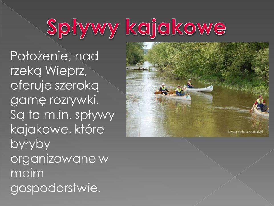 Położenie, nad rzeką Wieprz, oferuje szeroką gamę rozrywki.