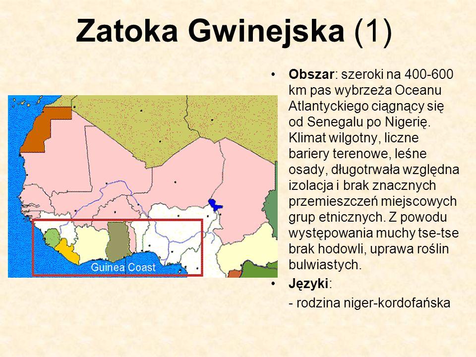 Zatoka Gwinejska (1) Obszar: szeroki na 400-600 km pas wybrzeża Oceanu Atlantyckiego ciągnący się od Senegalu po Nigerię. Klimat wilgotny, liczne bari