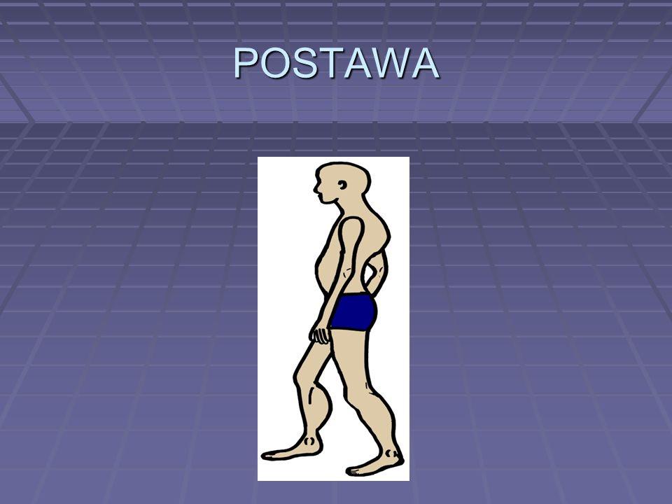 POSTAWA