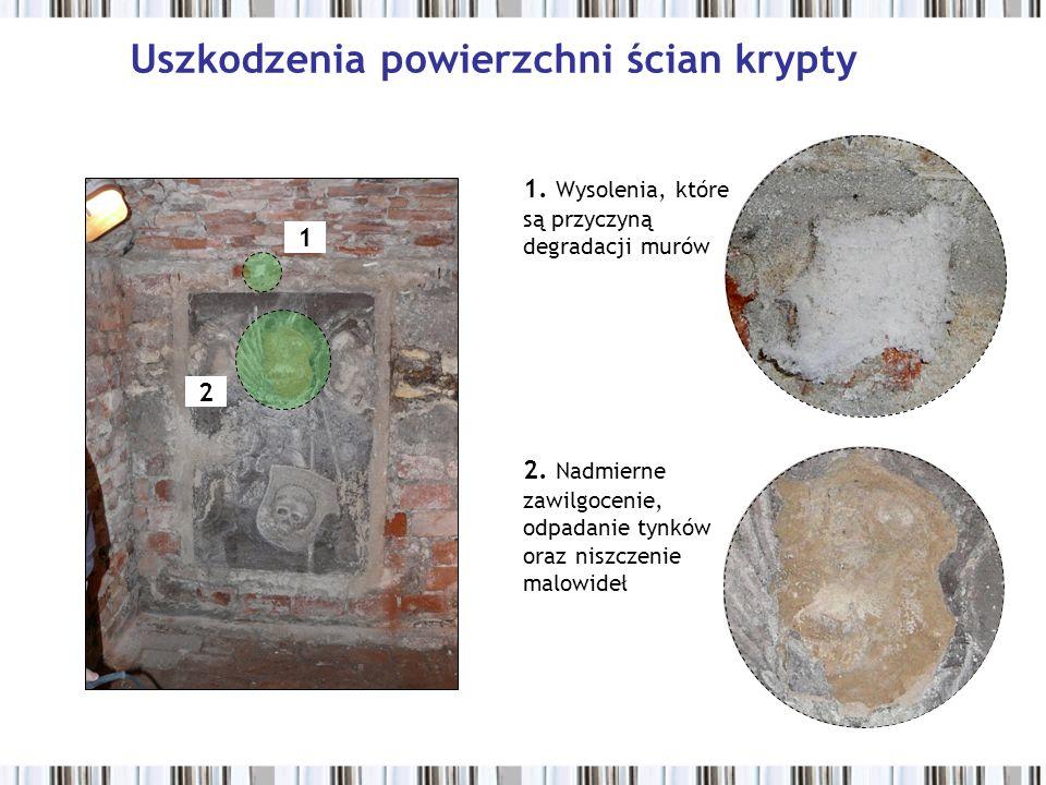 2 1 Uszkodzenia powierzchni ścian krypty 1. Wysolenia, które są przyczyną degradacji murów 2. Nadmierne zawilgocenie, odpadanie tynków oraz niszczenie