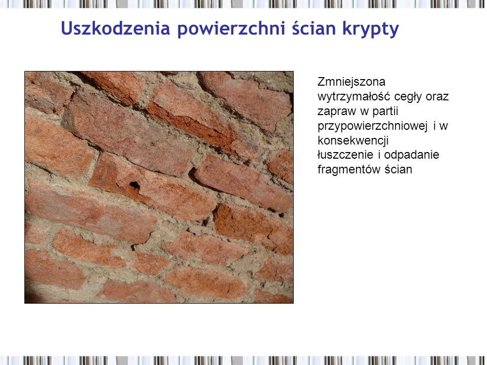 Uszkodzenia powierzchni ścian krypty Zmniejszona wytrzymałość cegły oraz zapraw w partii przypowierzchniowej i w konsekwencji łuszczenie i odpadanie fragmentów ścian