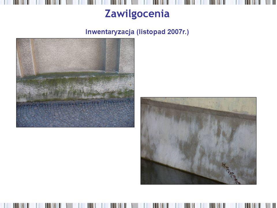 Zniszczenie tynków Inwentaryzacja (listopad 2007r.)
