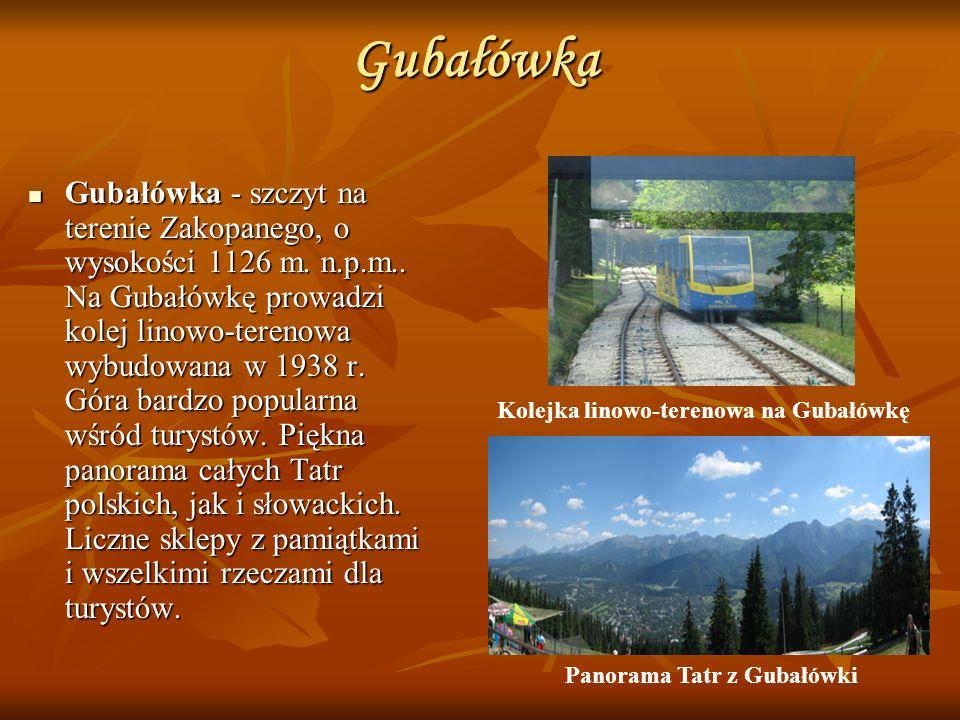 Gubałówka Gubałówka - szczyt na terenie Zakopanego, o wysokości 1126 m. n.p.m.. Na Gubałówkę prowadzi kolej linowo-terenowa wybudowana w 1938 r. Góra