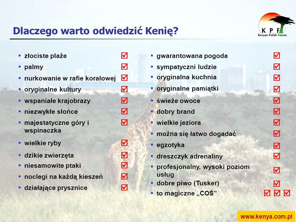 www.kenya.com.pl złociste plaże Dlaczego warto odwiedzić Kenię.