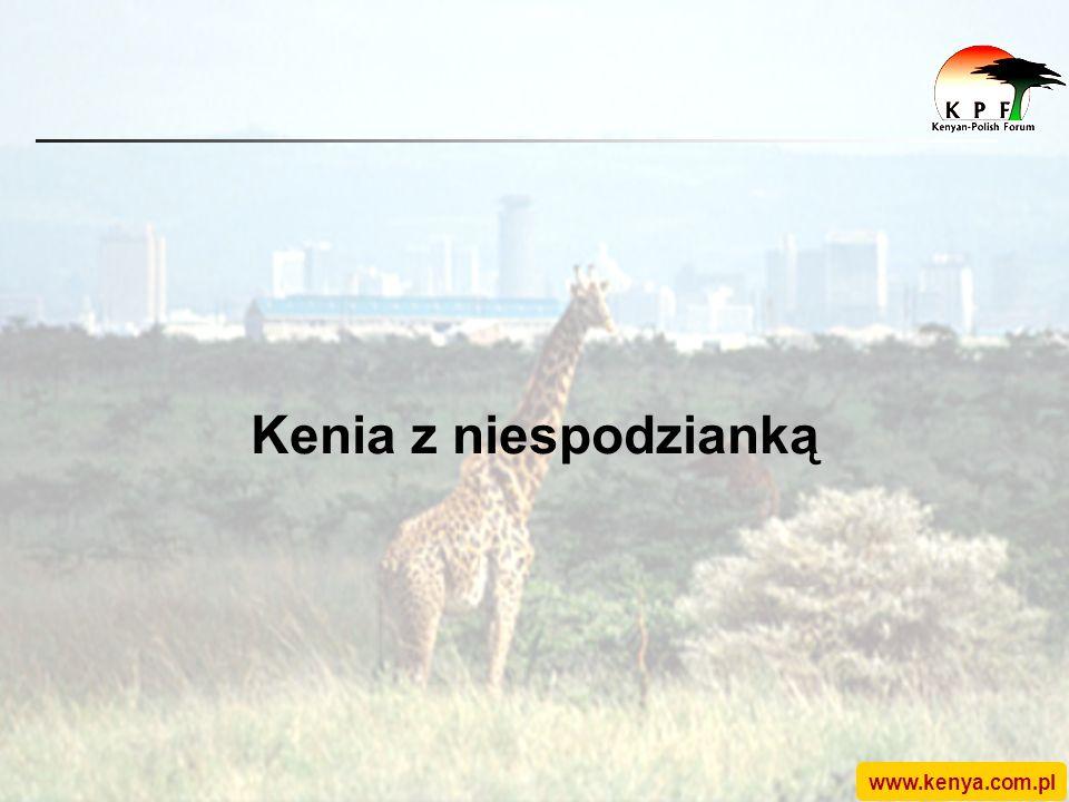 www.kenya.com.pl Kenia z niespodzianką