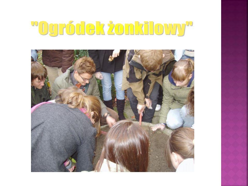Po akcji Pola Nadziei powstaje szkolne koło wolontariatu.
