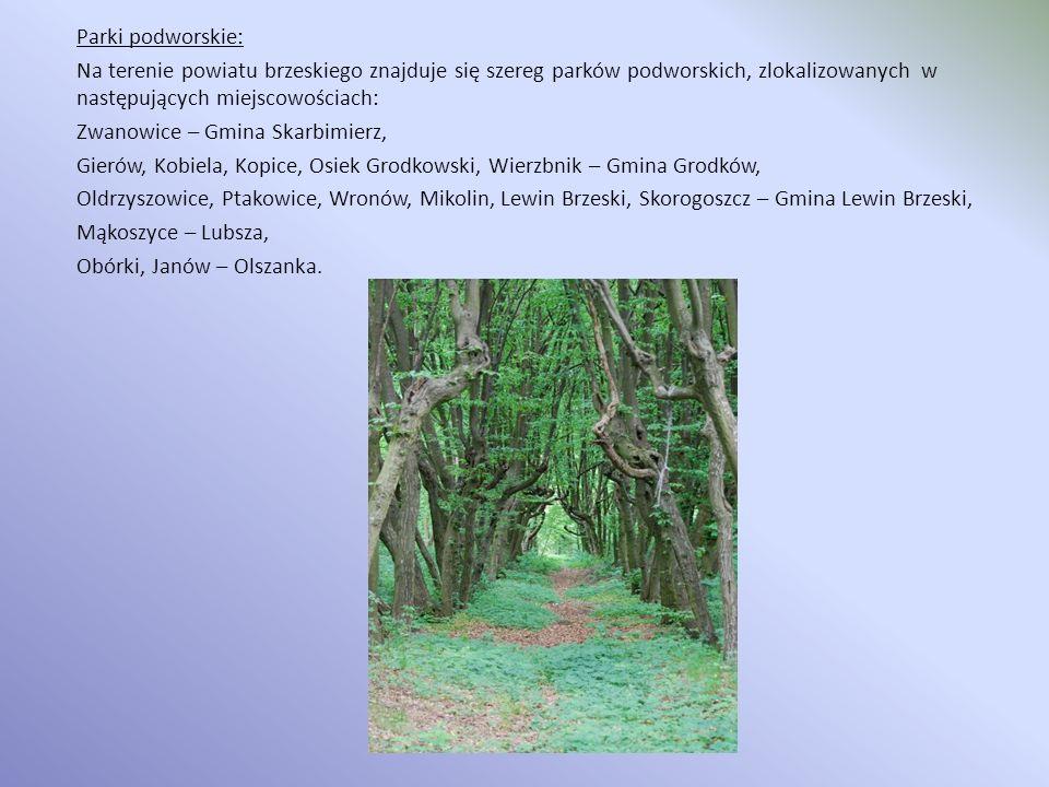 Parki podworskie: Na terenie powiatu brzeskiego znajduje się szereg parków podworskich, zlokalizowanych w następujących miejscowościach: Zwanowice – G