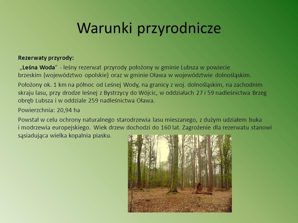 Warunki przyrodnicze Rezerwaty przyrody: Leśna Woda - leśny rezerwat przyrody położony w gminie Lubsza w powiecie brzeskim (województwo opolskie) oraz