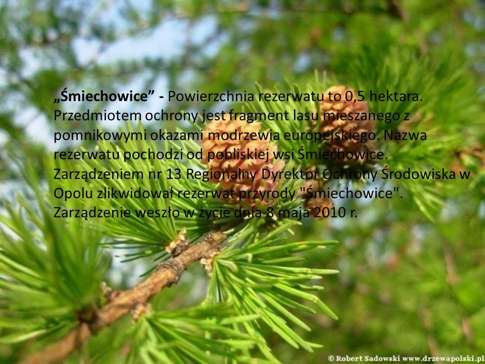Śmiechowice - Powierzchnia rezerwatu to 0,5 hektara. Przedmiotem ochrony jest fragment lasu mieszanego z pomnikowymi okazami modrzewia europejskiego.