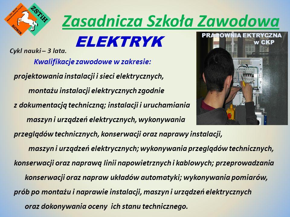 Kwalifikacje zawodowe w zakresie: projektowania instalacji i sieci elektrycznych, montażu instalacji elektrycznych zgodnie z dokumentacją techniczną; instalacji i uruchamiania maszyn i urządzeń elektrycznych, wykonywania przeglądów technicznych, konserwacji oraz naprawy instalacji, maszyn i urządzeń elektrycznych; wykonywania przeglądów technicznych, konserwacji oraz naprawą linii napowietrznych i kablowych; przeprowadzania konserwacji oraz napraw układów automatyki; wykonywania pomiarów, prób po montażu i naprawie instalacji, maszyn i urządzeń elektrycznych oraz dokonywania oceny ich stanu technicznego.