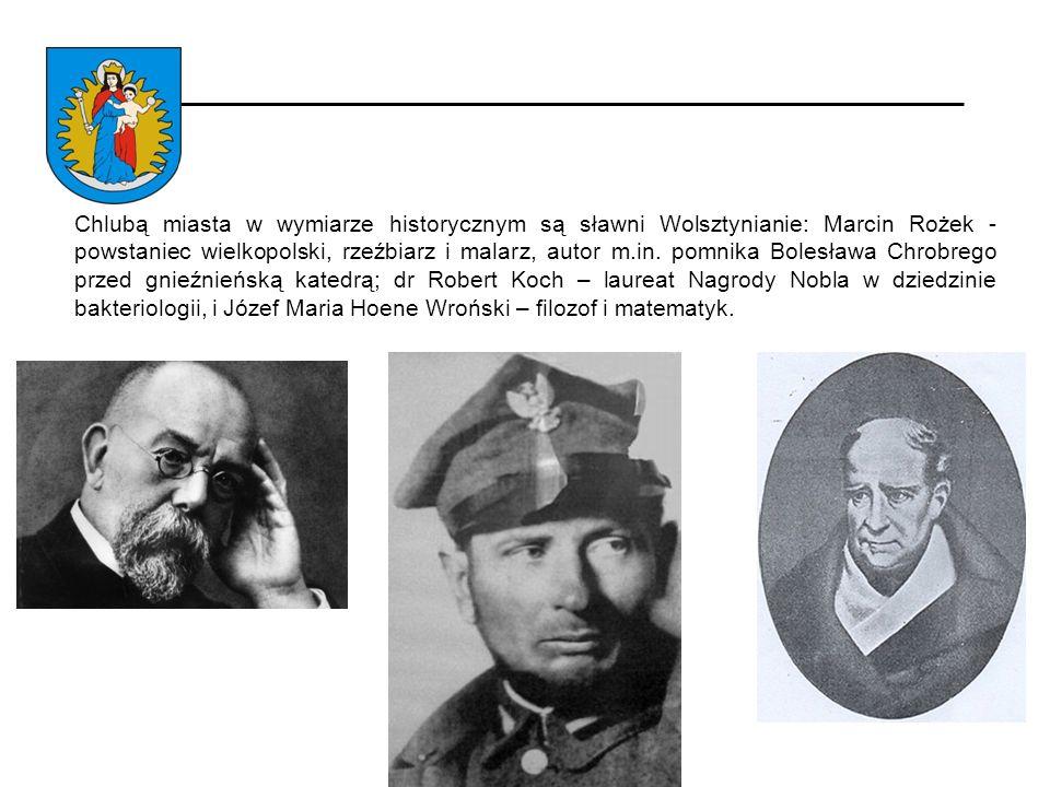 Chlubą miasta w wymiarze historycznym są sławni Wolsztynianie: Marcin Rożek - powstaniec wielkopolski, rzeźbiarz i malarz, autor m.in.