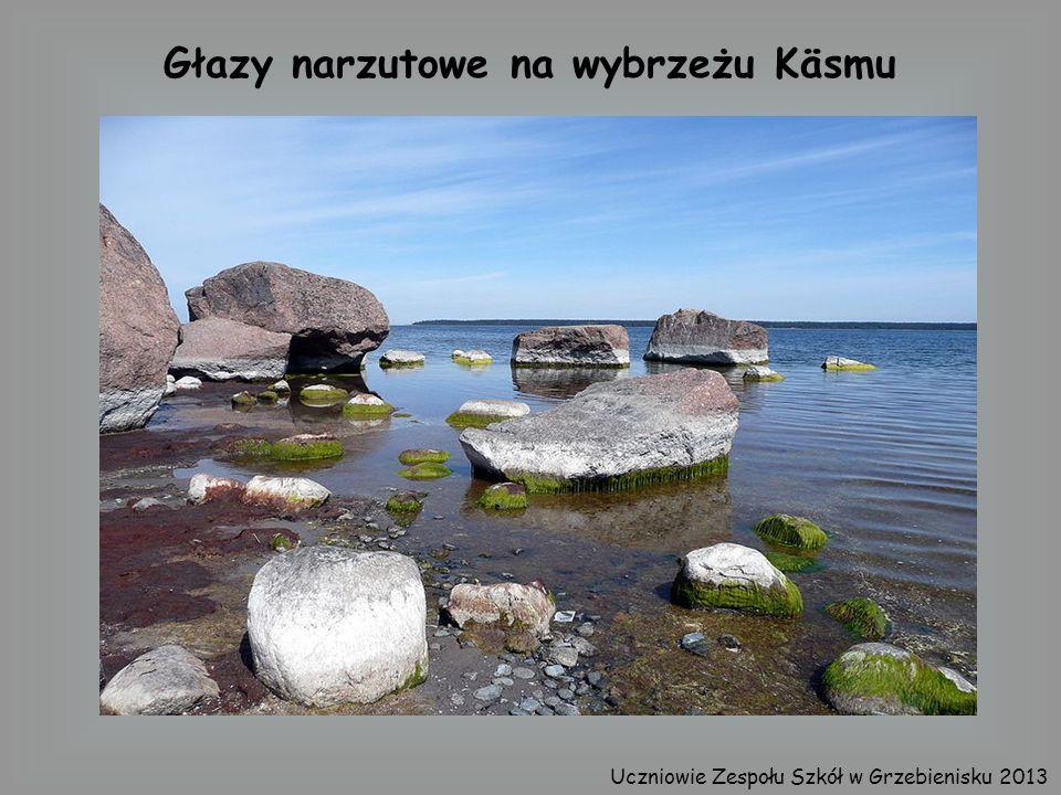 Głazy narzutowe na wybrzeżu Käsmu Uczniowie Zespołu Szkół w Grzebienisku 2013
