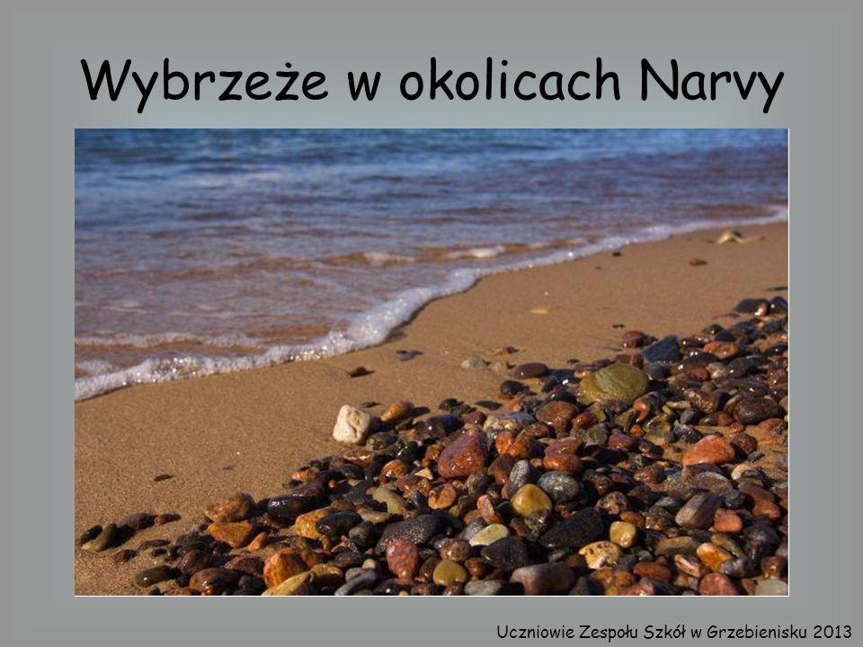 Wybrzeże w okolicach Narvy Uczniowie Zespołu Szkół w Grzebienisku 2013