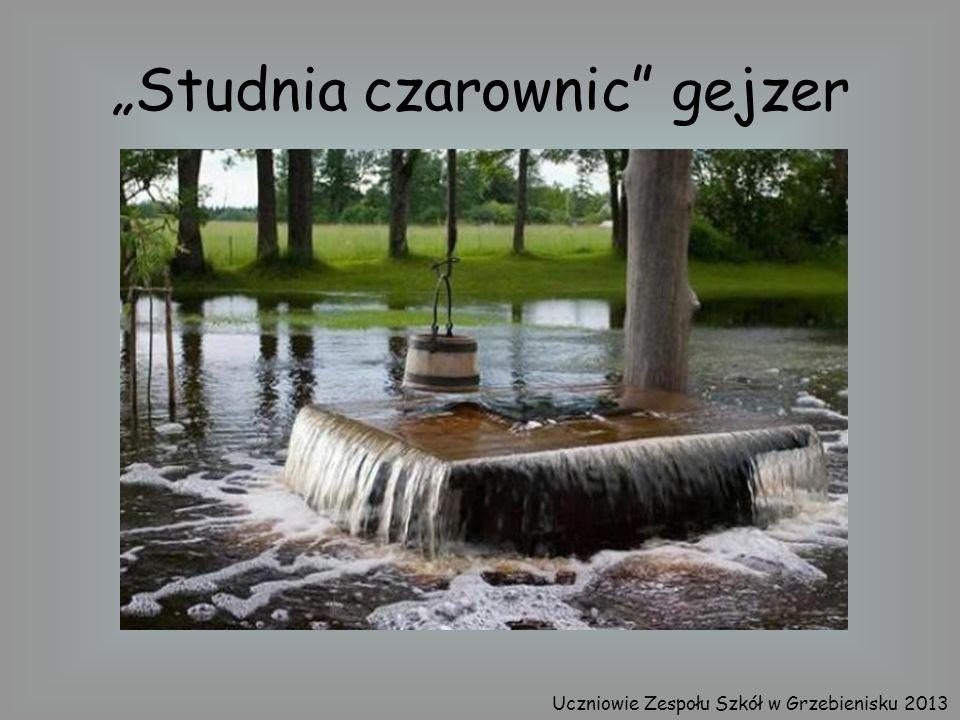 Studnia czarownic gejzer Uczniowie Zespołu Szkół w Grzebienisku 2013