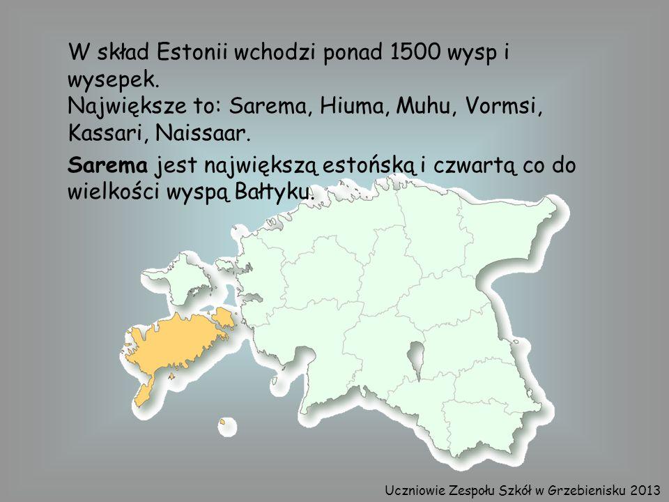 W skład Estonii wchodzi ponad 1500 wysp i wysepek. Największe to: Sarema, Hiuma, Muhu, Vormsi, Kassari, Naissaar. Sarema jest największą estońską i cz