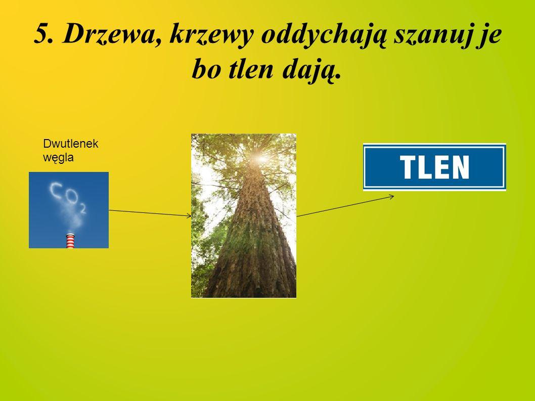 5. Drzewa, krzewy oddychają szanuj je bo tlen dają. Dwutlenek węgla