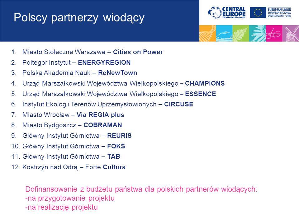 regionppregionpp Śląskie32Łódzkie5 Dolnośląskie31Zachodniopomorskie3 Mazowieckie30Opolskie3 Małopolskie18Lubelskie2 Pomorskie17Podlaskie2 Wielkopolskie12Warmińsko-Mazurskie2 Kujawsko-Pomorskie11Świętokrzyskie3 Podkarpackie9Lubuskie1 181 partnerów dofinansowanie 31,53 mln euro 29 zakończonych projektów Udział polskich partnerów w podziale na regiony