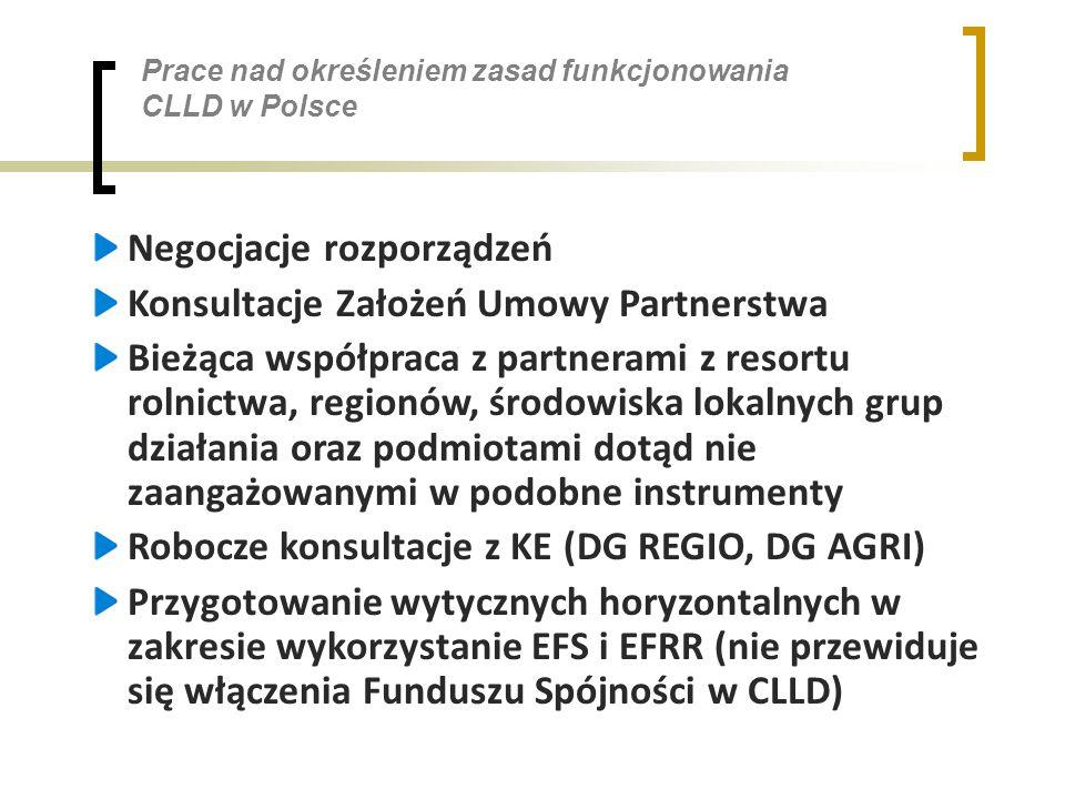 Prace nad określeniem zasad funkcjonowania CLLD w Polsce Negocjacje rozporządzeń Konsultacje Założeń Umowy Partnerstwa Bieżąca współpraca z partnerami z resortu rolnictwa, regionów, środowiska lokalnych grup działania oraz podmiotami dotąd nie zaangażowanymi w podobne instrumenty Robocze konsultacje z KE (DG REGIO, DG AGRI) Przygotowanie wytycznych horyzontalnych w zakresie wykorzystanie EFS i EFRR (nie przewiduje się włączenia Funduszu Spójności w CLLD)