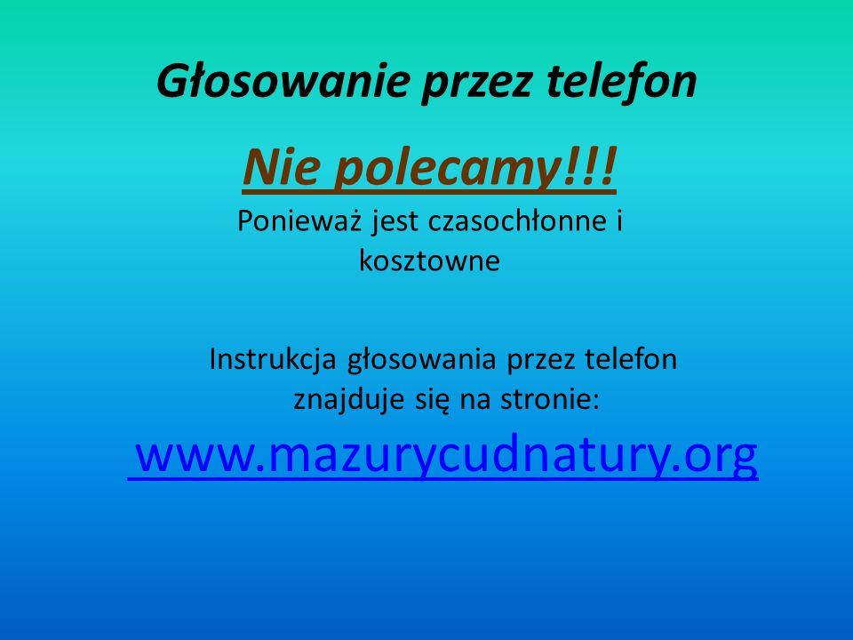 Głosowanie przez telefon Nie polecamy!!.
