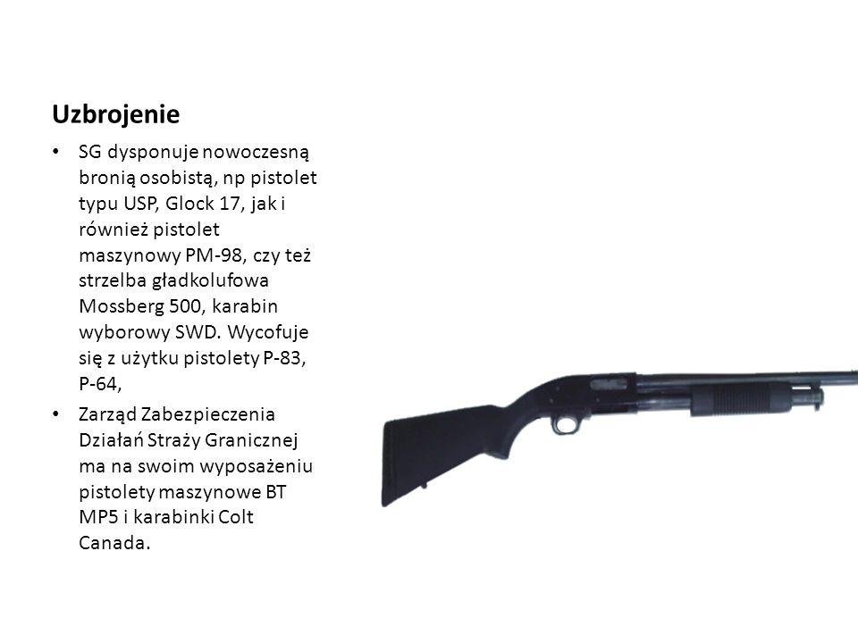 Uzbrojenie SG dysponuje nowoczesną bronią osobistą, np pistolet typu USP, Glock 17, jak i również pistolet maszynowy PM-98, czy też strzelba gładkoluf