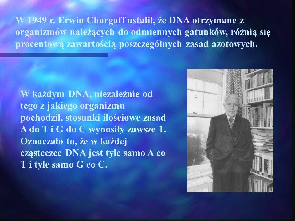 W 1949 r. Erwin Chargaff ustalił, że DNA otrzymane z organizmów należących do odmiennych gatunków, różnią się procentową zawartością poszczególnych za