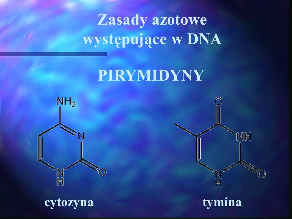 Zasady azotowe występujące w DNA PIRYMIDYNY cytozynatymina