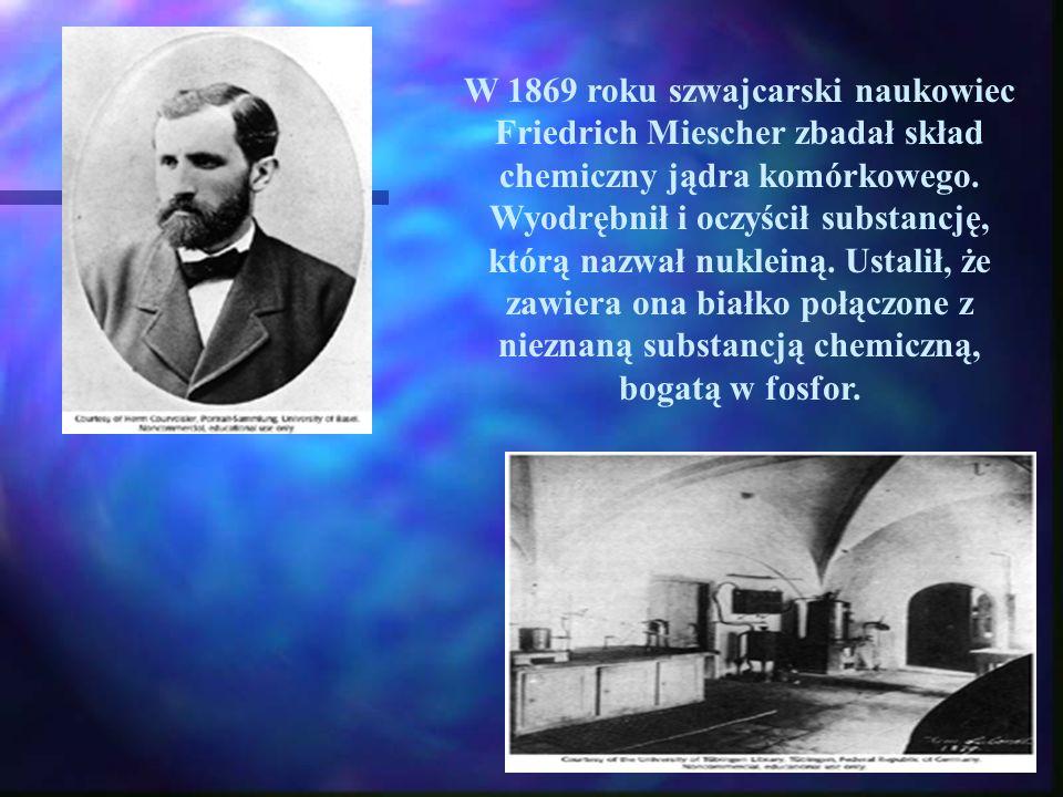 W 1869 roku szwajcarski naukowiec Friedrich Miescher zbadał skład chemiczny jądra komórkowego. Wyodrębnił i oczyścił substancję, którą nazwał nukleiną