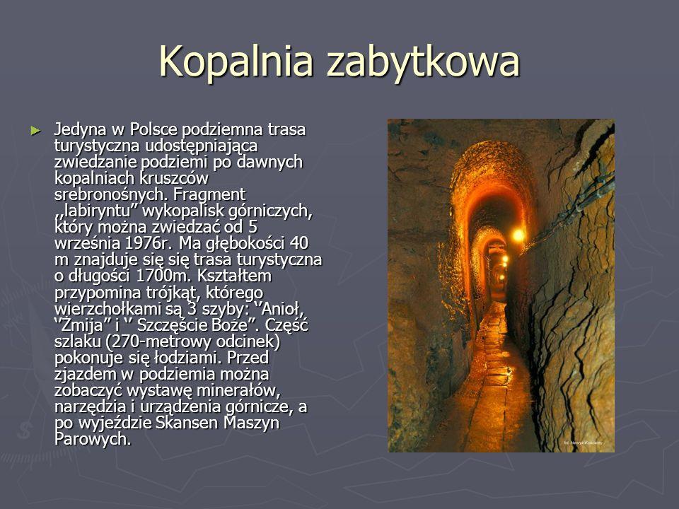 Kopalnia zabytkowa Jedyna w Polsce podziemna trasa turystyczna udostępniająca zwiedzanie podziemi po dawnych kopalniach kruszców srebronośnych. Fragme