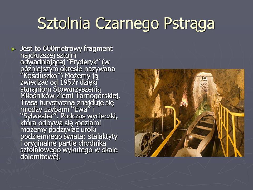 Sztolnia Czarnego Pstrąga Jest to 600metrowy fragment najdłuższej sztolni odwadniającej Fryderyk (w późniejszym okresie nazywana Kościuszko) Możemy ją zwiedzać od 1957r dzięki staraniom Stowarzyszenia Miłośników Ziemi Tarnogórskiej.