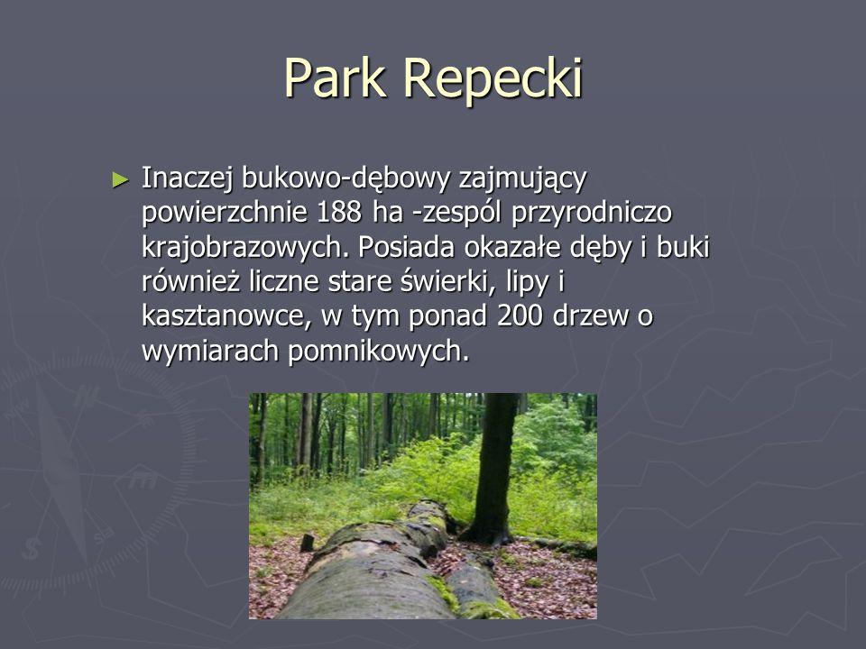 Park Repecki Inaczej bukowo-dębowy zajmujący powierzchnie 188 ha -zespól przyrodniczo krajobrazowych. Posiada okazałe dęby i buki również liczne stare