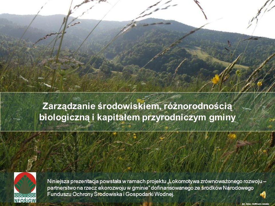 Zarządzanie środowiskiem, różnorodnością biologiczną i kapitałem przyrodniczym gminy Niniejsza prezentacja powstała w ramach projektu Lokomotywa zrównoważonego rozwoju – partnerstwo na rzecz ekorozwoju w gminie dofinansowanego ze środków Narodowego Funduszu Ochrony Środowiska i Gospodarki Wodnej.
