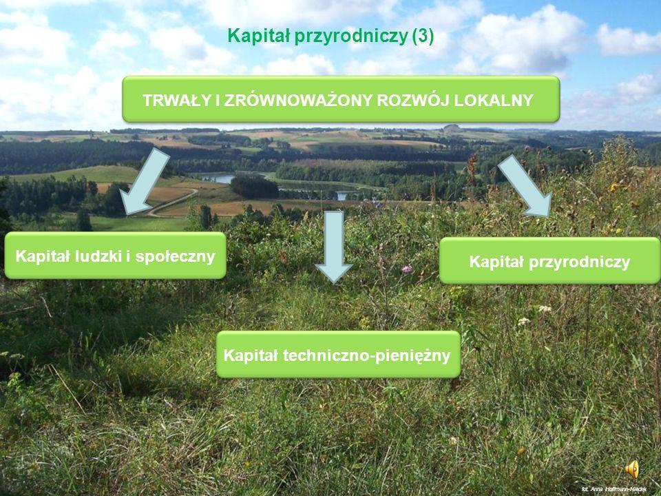 Zasoby przyrodnicze gminy Kapitał rozwojowy Kapitał przyrodniczy (2) Pomnażanie kapitału przyrodniczego wielorakie formy ochrony i zwiększania jakości