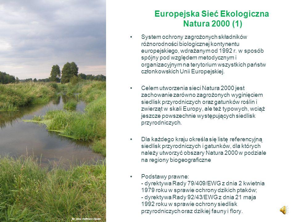 Europejska Sieć Ekologiczna Natura 2000 fot. Anna Hoffmann-Niedek