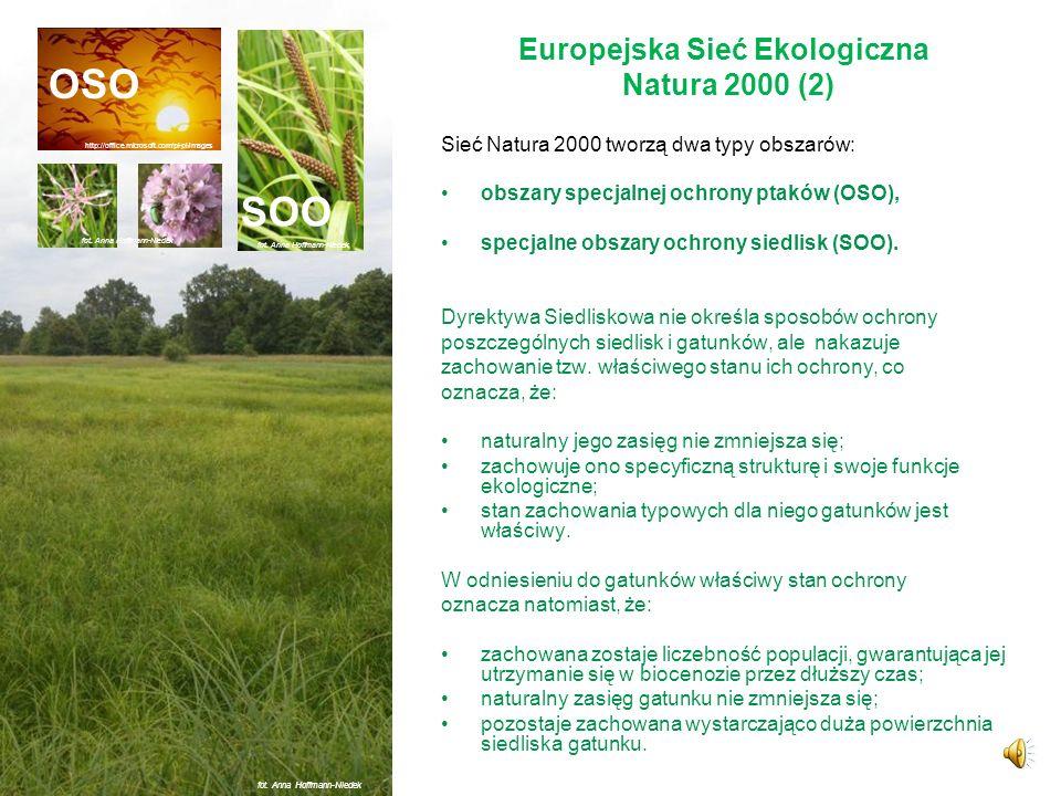 Europejska Sieć Ekologiczna Natura 2000 (1) System ochrony zagrożonych składników różnorodności biologicznej kontynentu europejskiego, wdrażanym od 19