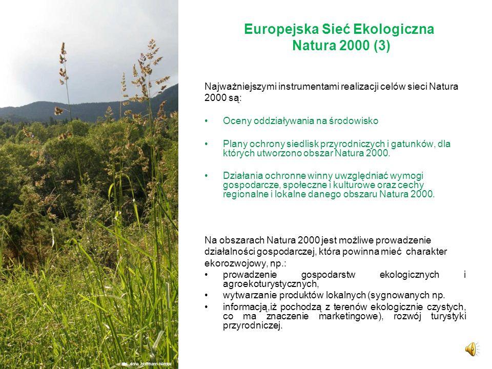 Europejska Sieć Ekologiczna Natura 2000 (2) Sieć Natura 2000 tworzą dwa typy obszarów: obszary specjalnej ochrony ptaków (OSO), specjalne obszary ochr