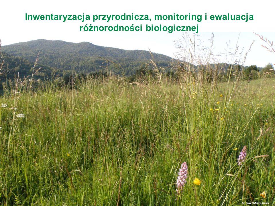 Europejska Sieć Ekologiczna Natura 2000 (3) Najważniejszymi instrumentami realizacji celów sieci Natura 2000 są: Oceny oddziaływania na środowisko Pla