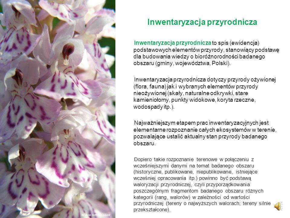 Różnorodność biologiczna to zgodnie z Konwencją o różnorodności biologicznej z 1992 r. zróżnicowanie wszystkich żywych organizmów występujących na Zie