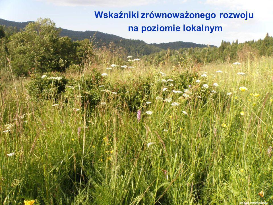 Monitorowanie jakości środowiska (5) Stale aktualizowana informacja o stanie środowiska w Polsce znajduje się na stronie Głównego Inspektoratu Ochrony