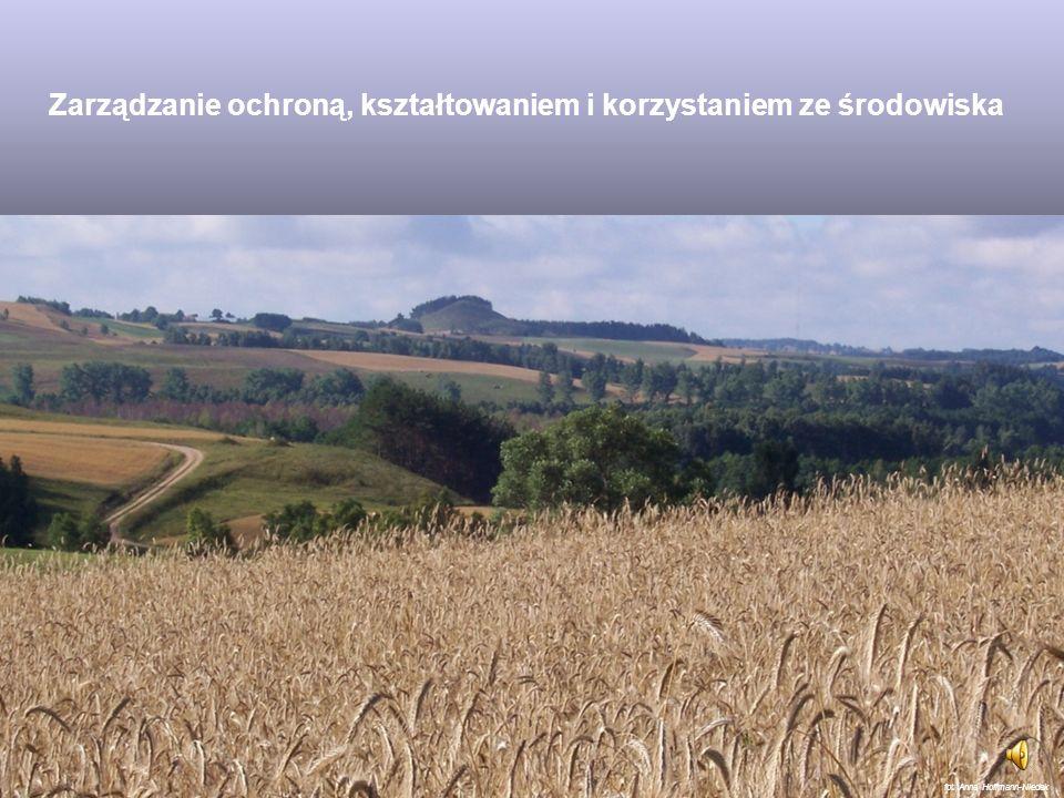 Środowisko w kontekście społeczno-gospodarczym Według Prawa Ochrony Środowiska: Środowisko to ogół elementów przyrodniczych, w tym także przekształcon