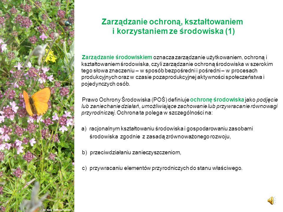 Zarządzanie ochroną, kształtowaniem i korzystaniem ze środowiska fot. Anna Hoffmann-Niedek