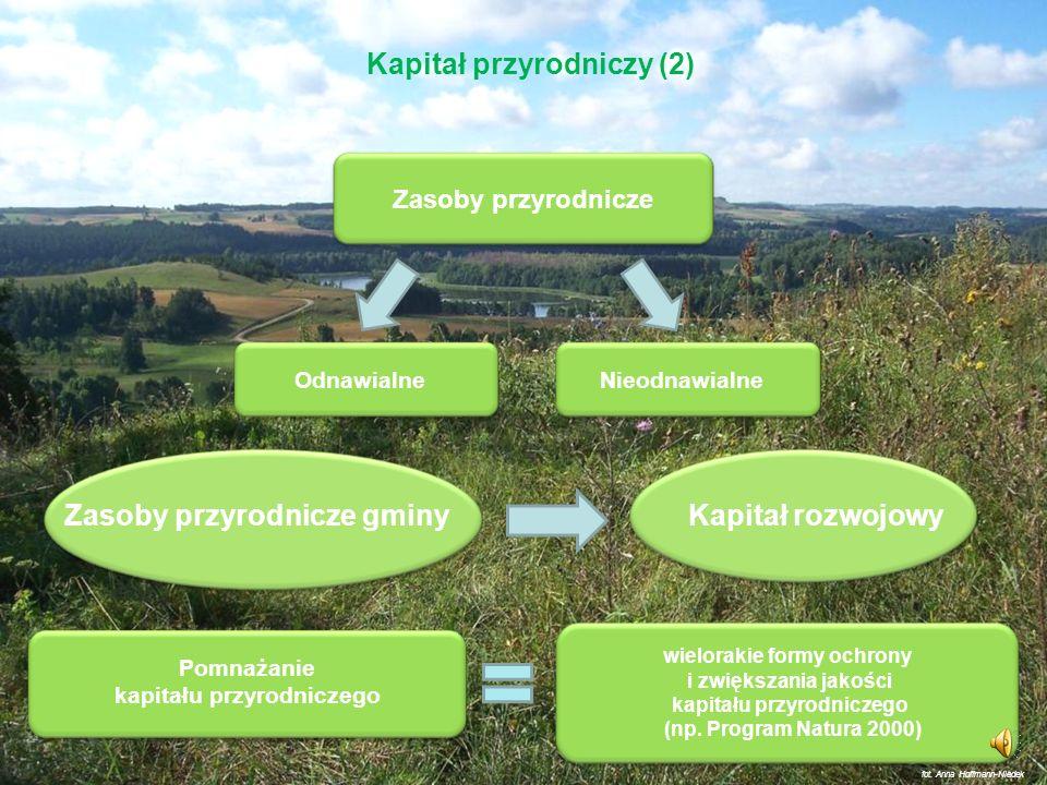 Kapitał przyrodniczy (1) Kapitał (w konwencjonalnym ujęciu) – to jeden z czynników produkcji (obok ziemi i pracy) – składają się nań budynki, maszyny