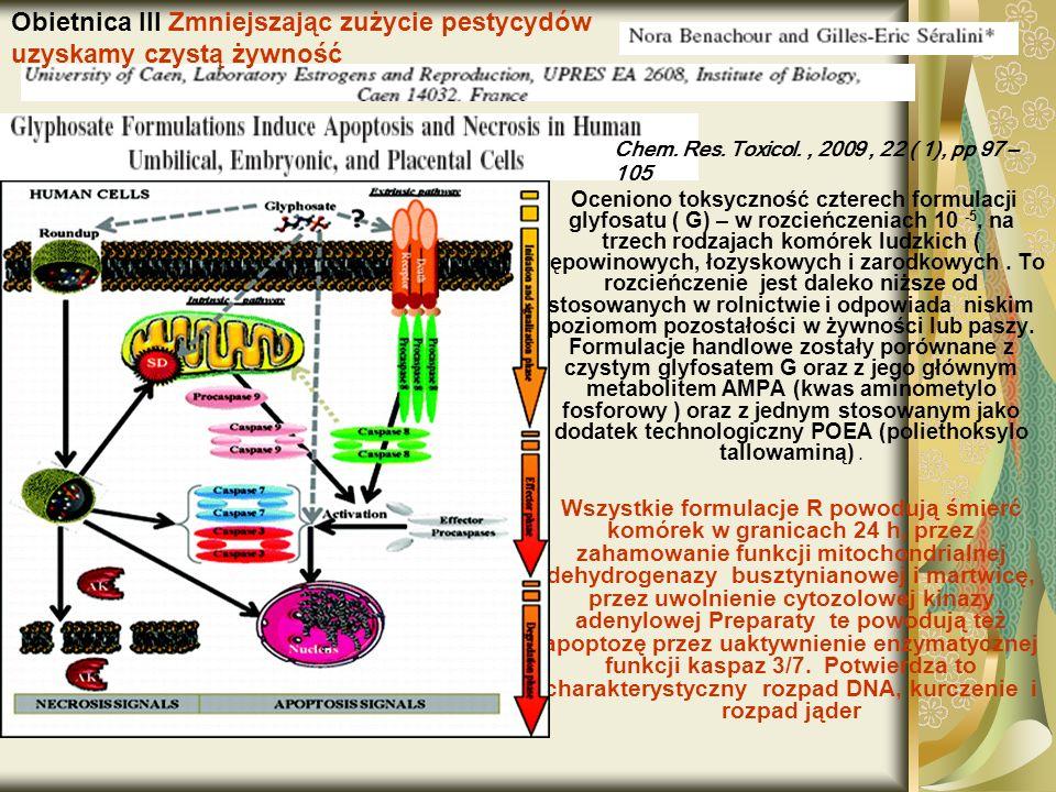 Oceniono toksyczność czterech formulacji glyfosatu ( G) – w rozcieńczeniach 10 -5, na trzech rodzajach komórek ludzkich ( pępowinowych, łozyskowych i