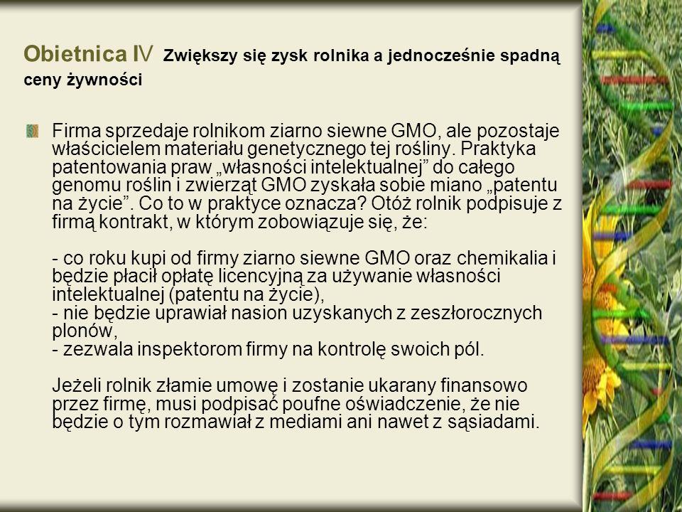 Firma sprzedaje rolnikom ziarno siewne GMO, ale pozostaje właścicielem materiału genetycznego tej rośliny. Praktyka patentowania praw własności intele