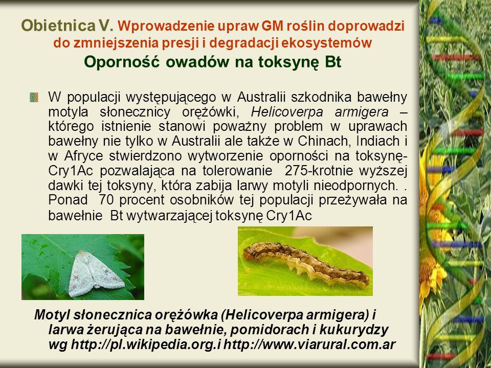 Obietnica V. Wprowadzenie upraw GM roślin doprowadzi do zmniejszenia presji i degradacji ekosystemów Oporność owadów na toksynę Bt W populacji występu