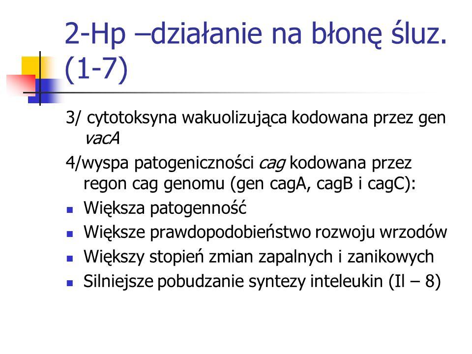 2-Hp –działanie na błonę śluz. (1-7) 3/ cytotoksyna wakuolizująca kodowana przez gen vacA 4/wyspa patogeniczności cag kodowana przez regon cag genomu