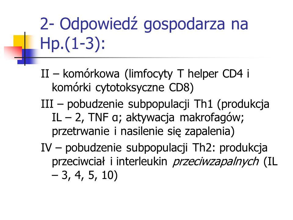 2- Odpowiedź gospodarza na Hp.(1-3): II – komórkowa (limfocyty T helper CD4 i komórki cytotoksyczne CD8) III – pobudzenie subpopulacji Th1 (produkcja
