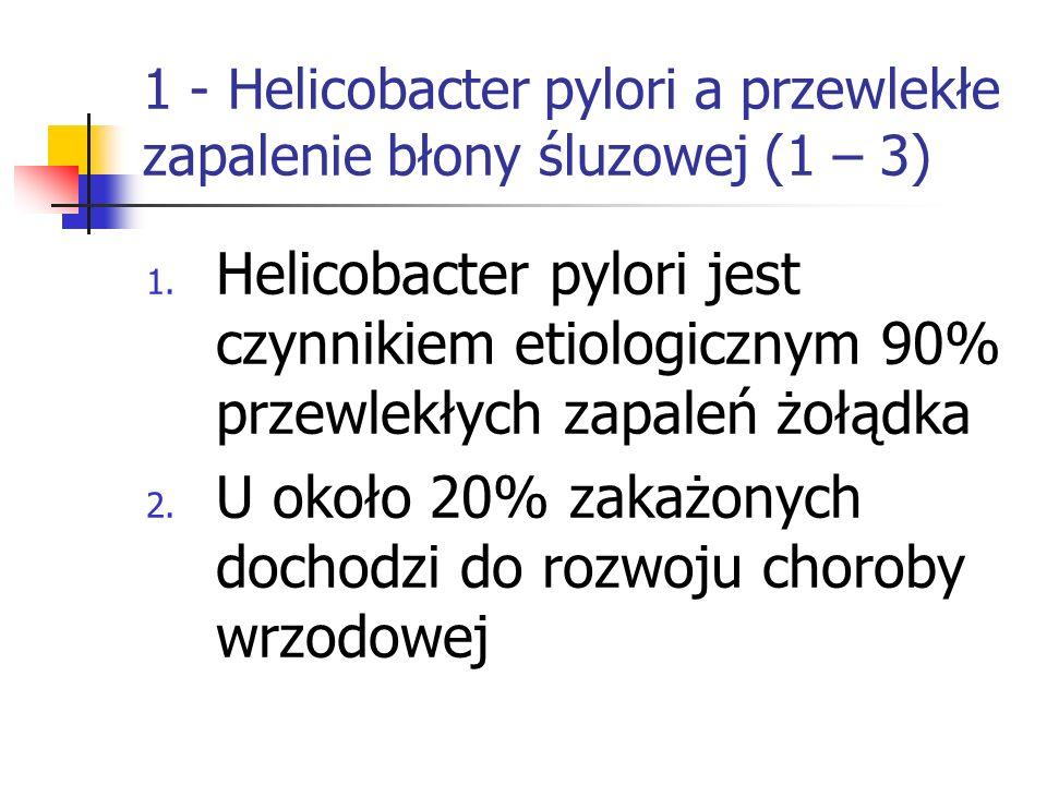 1 - Helicobacter pylori a przewlekłe zapalenie błony śluzowej (1 – 3) 1. Helicobacter pylori jest czynnikiem etiologicznym 90% przewlekłych zapaleń żo