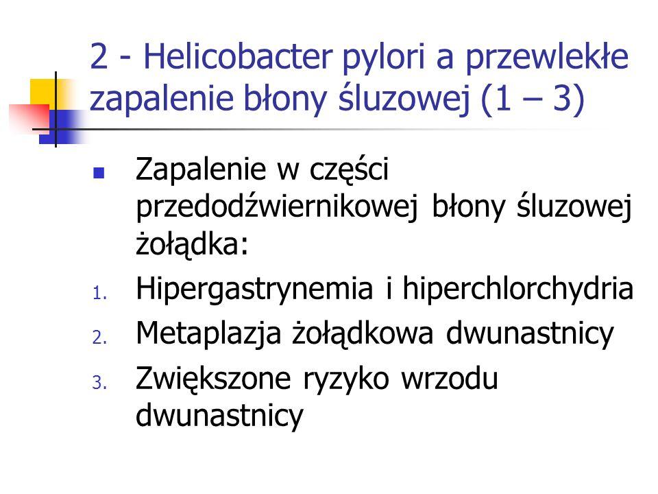 2 - Helicobacter pylori a przewlekłe zapalenie błony śluzowej (1 – 3) Zapalenie w części przedodźwiernikowej błony śluzowej żołądka: 1. Hipergastrynem