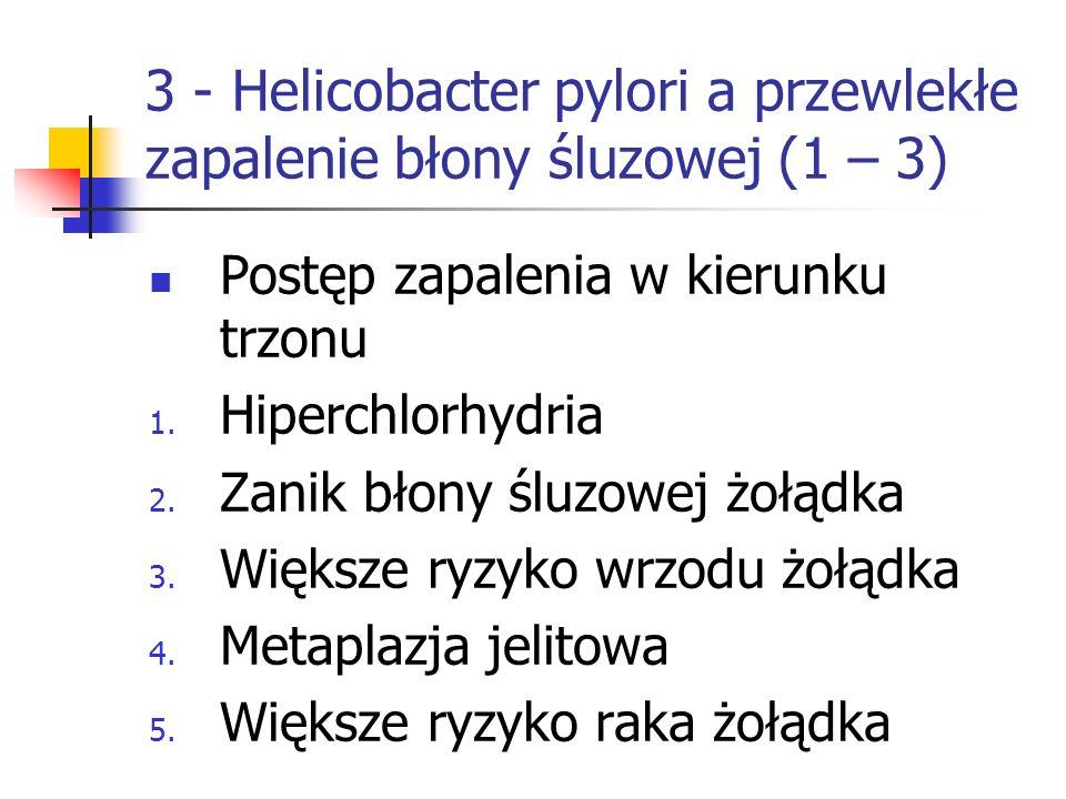 3 - Helicobacter pylori a przewlekłe zapalenie błony śluzowej (1 – 3) Postęp zapalenia w kierunku trzonu 1. Hiperchlorhydria 2. Zanik błony śluzowej ż